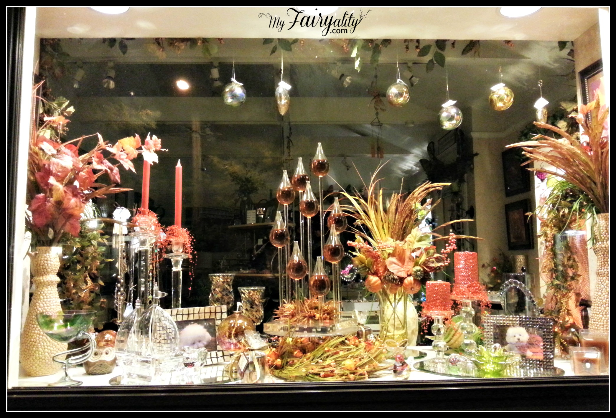 fall store window