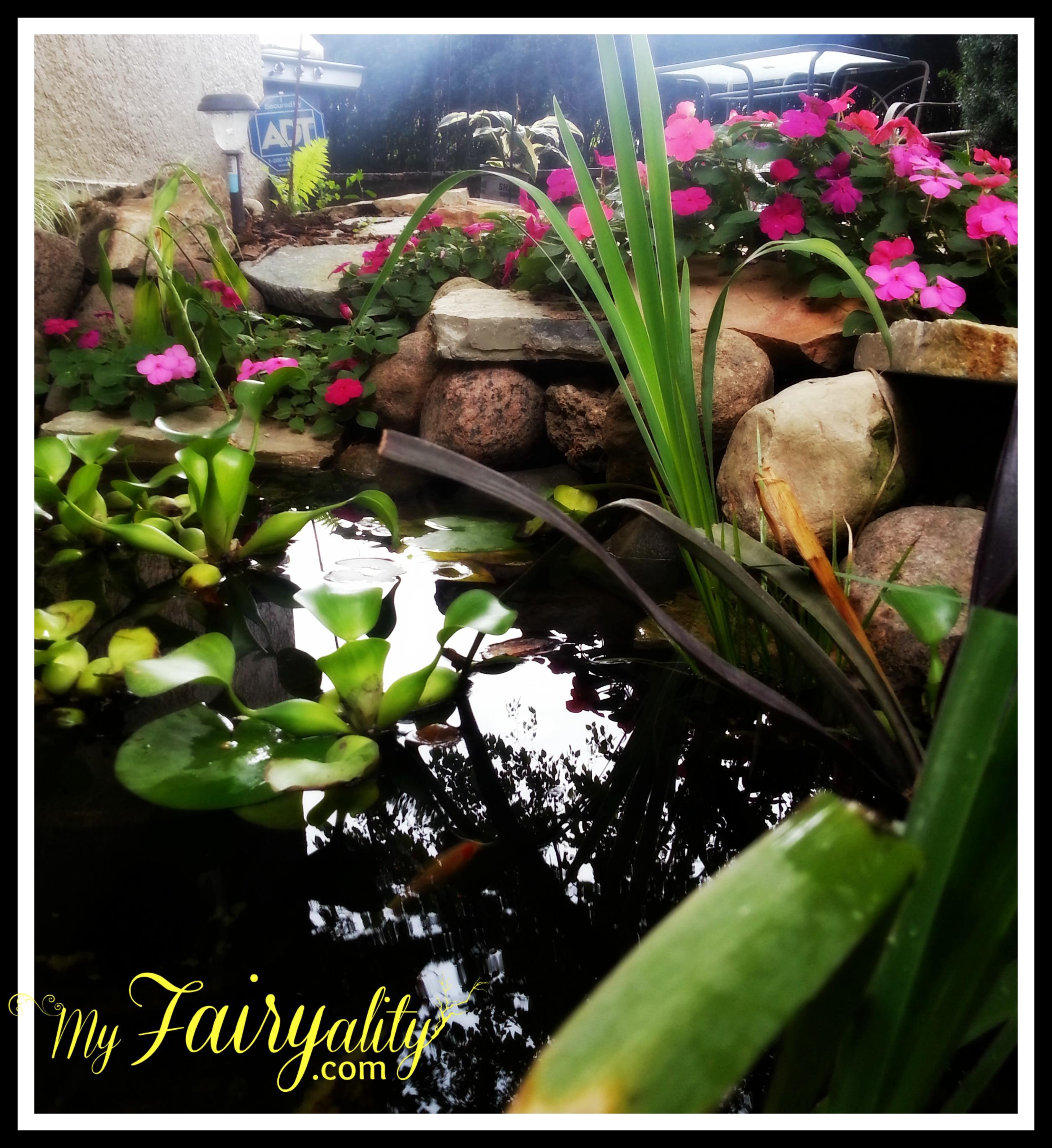 pond twrd house