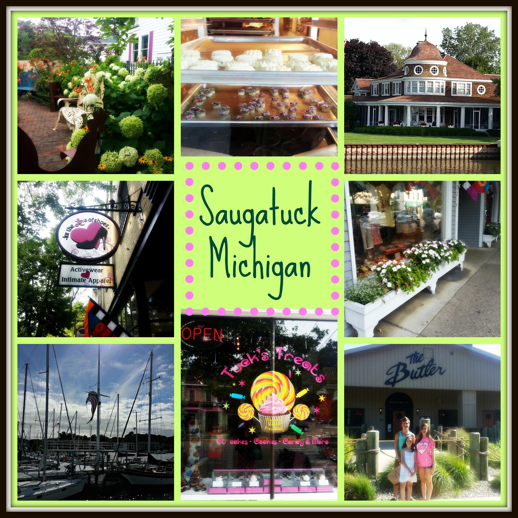 Saugatuck Michigan Montage'